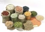 dry-legumes